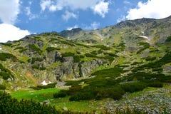 Dolina de Mlynicka, Vysoke Tatry (vale de Mlinicka, Tatras alto) - Eslováquia Fotos de Stock Royalty Free