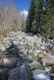 Dolina del studena de Mala - valle en alto Tatras, Eslovaquia Fotos de archivo libres de regalías