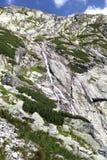 Dolina del studena de Mala - valle en alto Tatras, Eslovaquia Imagen de archivo libre de regalías