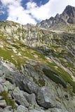 Dolina del studena de Mala - valle en alto Tatras, Eslovaquia Foto de archivo libre de regalías