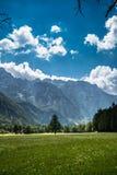 Dolina di Logarska Fotografia Stock Libera da Diritti