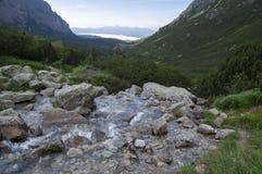 Dolina di Mengusovska, potok di Hincov, traccia di escursione pietrosa di stupore al supporto Rysy di altezza sopra la torrente m immagine stock libera da diritti