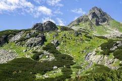 Dolina di Mengusovska, traccia di escursione importante al supporto Rysy, alte montagne di Tatra, Slovacchia, vista stupefacente  Fotografia Stock Libera da Diritti