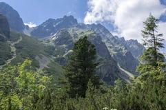 Dolina di Mengusovska, traccia di escursione importante al supporto Rysy, alte montagne di Tatra, Slovacchia, vista stupefacente  Fotografie Stock Libere da Diritti