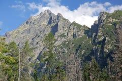 Dolina di studena di Mala - valle in alto Tatras, Slovacchia Fotografia Stock Libera da Diritti