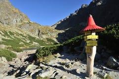 Dolina di Velicka, Vysoke Tatry Fotografia Stock Libera da Diritti