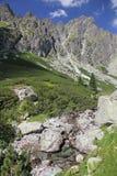 Dolina do studena de Mala - vale em Tatras alto, Eslováquia Imagem de Stock
