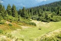 Dolina Karpackie góry Fotografia Stock