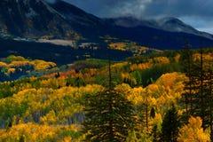 Dolina kolor zdjęcia stock