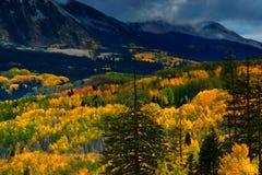 Dolina kolor zdjęcia royalty free