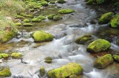 Dolina Koscieliska小河 库存照片