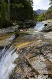 Dolina Manganello, Corsica obraz stock