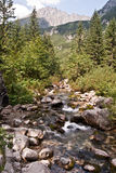 Dolina Raztoki valley with creek and peak above in Tatry mountains Stock Images
