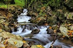 Dolina van de Watervalslowakije Zadielska van Nice Royalty-vrije Stock Foto