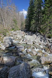 Dolina van Malastudena - vallei in Hoge Tatras, Slowakije Royalty-vrije Stock Foto's