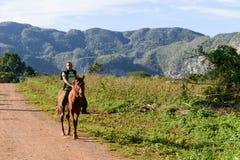 Dolina Vinales na Kuba Fotografia Stock