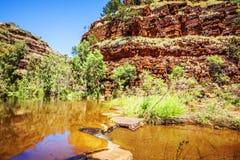 Dolina wąwóz Australia Fotografia Royalty Free
