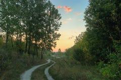 Dolina w parku Obrazy Stock