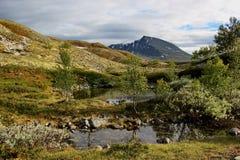 Dolina z małymi jeziorami i górą w tle, Norwegia Zdjęcie Royalty Free