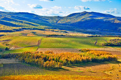 Dolinna jesieni sceneria Obrazy Royalty Free