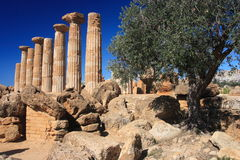 dolinne Agrigento świątynie Obraz Royalty Free