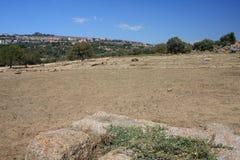 dolinne Agrigento świątynie Italy Sicily Zdjęcie Royalty Free