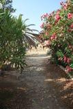 dolinne Agrigento świątynie Italy Sicily Zdjęcia Stock