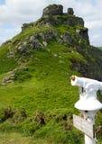 dolinne rockowe Devon grodowe skały Obraz Royalty Free