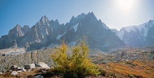 Dolinni, wysocy szczyty i Mont Blanc masyw w wiosce Chamonix w Francja i fotografia royalty free