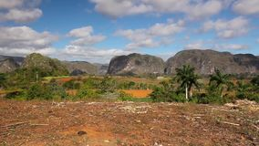 Dolinny De Vinales, Kuba zdjęcie wideo