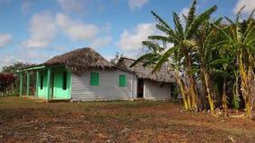 Dolinny De Vinales, Kuba zbiory wideo