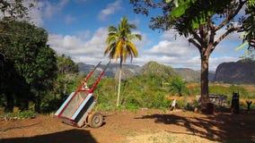 Dolinny De Vinales, pinar del rio, Kuba zbiory wideo