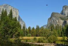 dolinny Yosemite Obraz Royalty Free