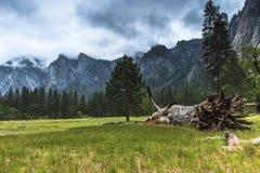 dolinny Yosemite Obraz Stock