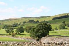 doliny yokshire Zdjęcia Royalty Free