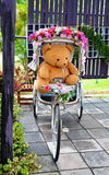 Doll bear on ti wheel bicycle Royalty Free Stock Photos