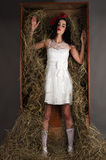 Doll from the box with hay Stock Photography