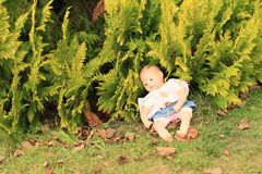 Doll in bush Royalty Free Stock Images