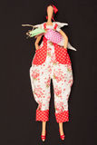 Doll with carrots. The photo shows the doll with carrots Royalty Free Stock Images