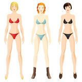 Doll with clothes. Woman body template. Redhead woman, blonde woman, brunette woman Royalty Free Stock Photos