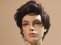 Doll, Display Dummy, Face, Portrait Royalty Free Stock Photography