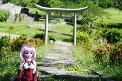 Doll in garden Royalty Free Stock Photo