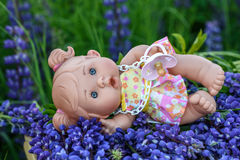 Doll with the  garden flowers Stock Photography