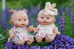 Doll with the  garden flowers Stock Image