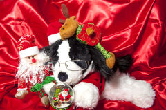 Doll with hat of santa claus and gifts Stock Photography