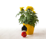 Doll Kokeshi on a background of yellow chrysanthemums  (mass pro Royalty Free Stock Images