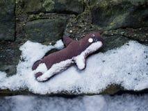Doll left alone on snow. Floor ground Stock Photos