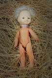 Doll lost on the hay Royalty Free Stock Images