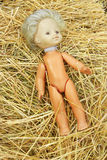 Doll lost on the hay Stock Photography