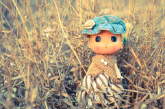 Doll. A lovely doll standing wild grass Royalty Free Stock Image